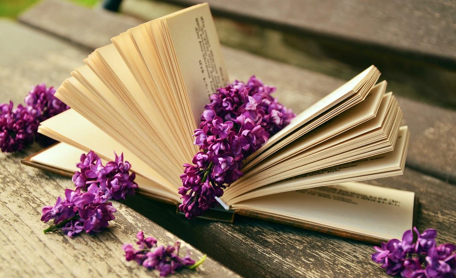 Book, Meet & Meditate Group ~